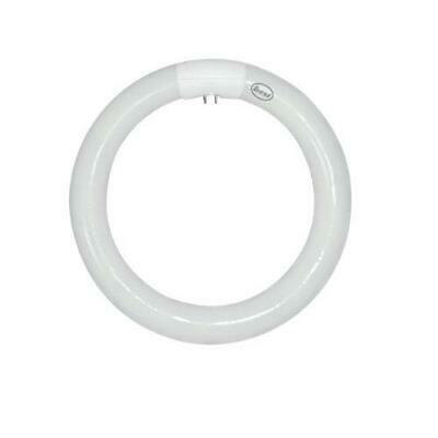 EVEREADY T6 T9 4PIN CIRCULAR WHITE LOW ENERGY LAMP 55W 32W 40W 60W 3200LM LIGHT