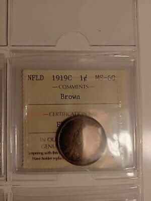 1919C Nfld Canada Large 1 Cent Penny Ms-60 Iccs Graded Brown Fy 481