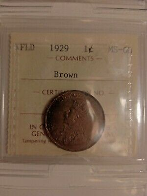 1929 Nfld Canada Large 1 Cent Penny Ms-60 Iccs Graded Brown Jl 438