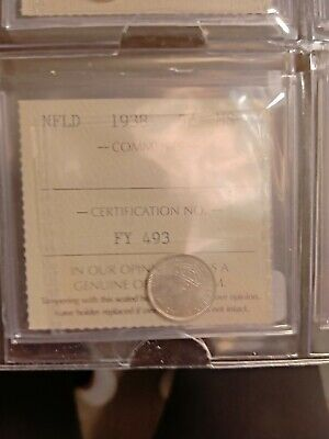 1938 Newfoundland Canada 5 Five Cent Coin Ms-64 Iccs Graded Fy 493