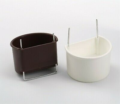 PARROT D_CUPS  White  / Brown