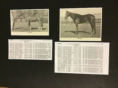 BOLD RULER 8X10 PHOTO HORSE RACING PICTURE SUNNY FITZSIMMONS