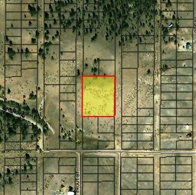 1.7 Acres In Park County, Colorado!  No Hoa