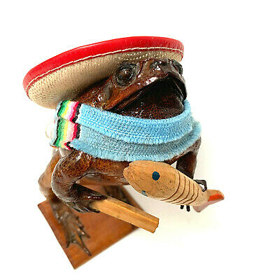 Taxidermy Mexican Folk Art Stuffed Frog Toad With Fish Sombrero Sarape