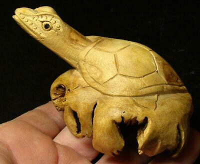 Highly Detailed Hand Carved Folk Art Turtle-Carved From Cypress Tree Root