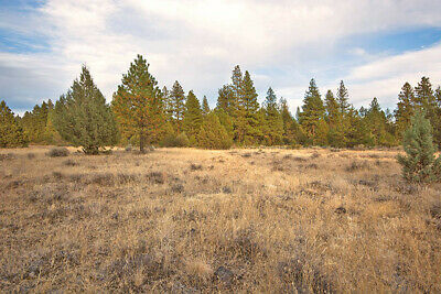 2.3 beautiful acres ~ Oregon, klamath County