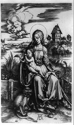 Photo:The Madonna of the Monkey,Woman,Baby,animals 9632