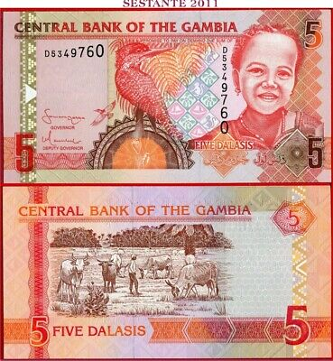 GAMBIA   -    5 DALASIS nd 2006/13  - P 25a  -   FDS / UNC