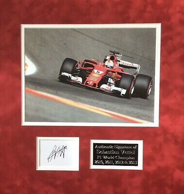 Sebastian Vettle Authentic Signed F1 Mounted Display Aftal#198