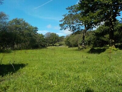 Approx 6.5 acres of Land / Woodland for Sale in Llanelli, Wales / Smallholding