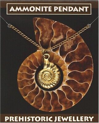 Ammonite Pendant - Gold Plated Pewter