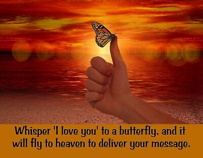 Whisper I love You Glass Block decal Butterfly decal Nightlight decal Heaven