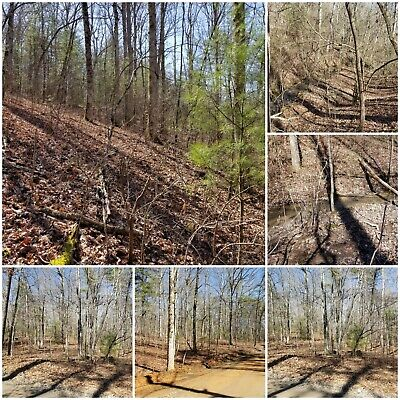 Beautiful Blue Ridge Mountain Property 5.69 Acres in Fannin County, GA