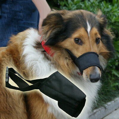 Pet Dog Puppy Adjustable Durable Protective Mouth Muzzle Anti Bark Bite Mask New