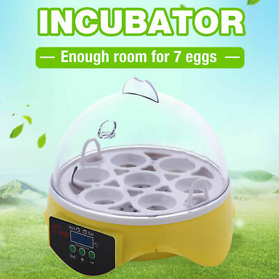 Useful Eggs Incubator Digital Auto Chicken Poultry Bird Quail Clear Hatcher C0Q3