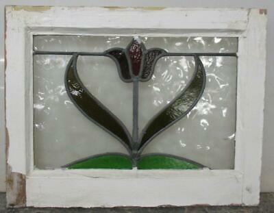 "OLD ENGLISH LEADED STAINED GLASS WINDOW Pretty tulip Design 20.75"" x 16"""