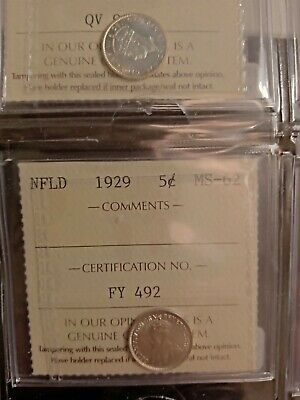 1929 Newfoundland Canada 5 Five Cent Coin Ms-62 Iccs Graded Fy 492