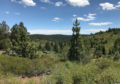 Beautiful Mountain Land! Easy Financing! Low Payments!