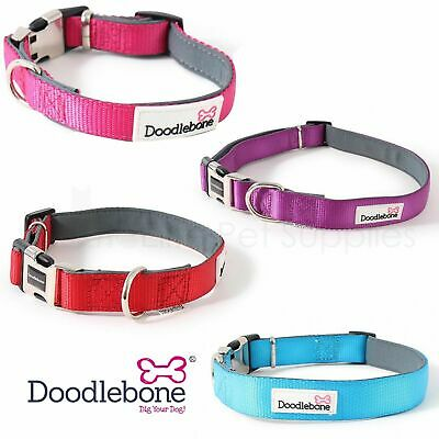 Doodlebone Dog Puppy Bold Padded Durable Adjustable Collars 4 Colours