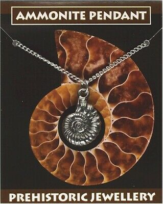 Ammonite Pendant - Pewter