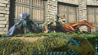 Ark Ps4 Pve Wyvern Pack