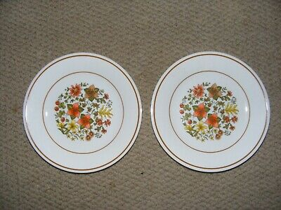 "CORELLE CORNING WARE INDIAN SUMMER 7"" BREAD/BUTTER PLATES FALL FLOWERS 2 pc LOT"