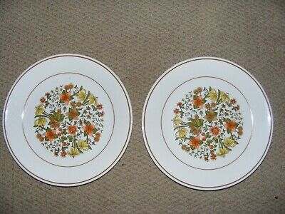 Corelle Corning Ware Indian Summer Salad Dessert 8.5 Plates Fall Flowers 2 Pc