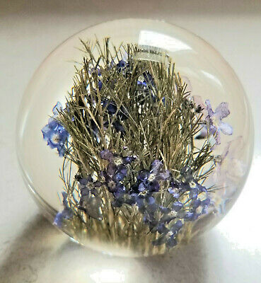 Vintage Hafod Grange Lucite Paperweight With Blue Flowers