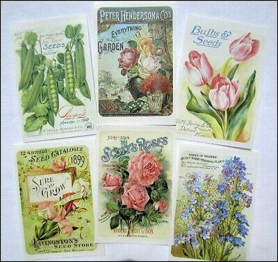 Set of 20 VINTAGE SEED & FLOWER PACKET STICKERS VICTORIAN Primitive, Shabby Chic