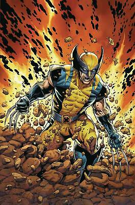 """Return Of Wolverine #1 Poster by McNiven (24"""" x 36"""") Rolled/New!"""