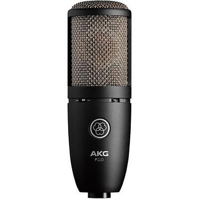 AKG Project Studio Line Series P220 Condenser Microphone Shipping from Japan