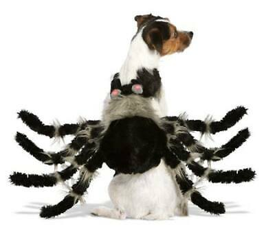 Thrills & Chills Spider Pet Halloween Party Costume for Dog Cat