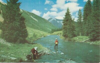 Trout Fishing Fisherman in the West Postcard Chrome Petley