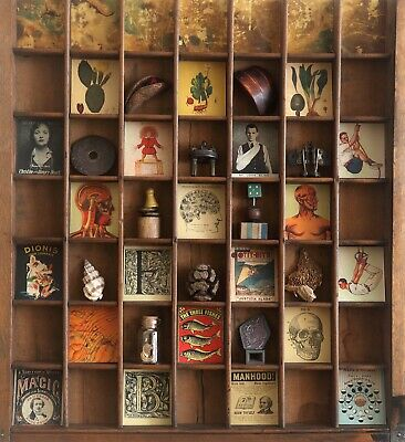 Great Cabinet of Curios in Vintage Letterpress Type Case Printers Drawer Cabinet