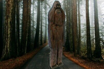 """SASQUATCH"" My hand carved & signed wood figure"