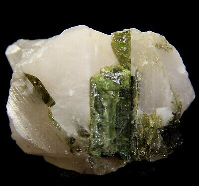 "2.75"" Deep Green Tourmaline in Quartz, Pederneira Claim, Brazil! 5R05"