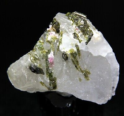 "2.25"" Gem Watermelon Tourmaline on Quartz, Pederneira Claim, Brazil! 5R11"