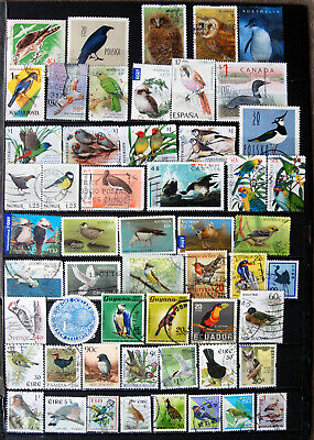 A Great Selection of Used Bird Thematics.