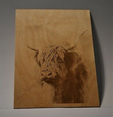 wood laser engraving a4 art animal gift crafts highland cow