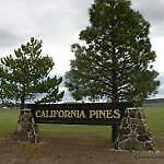 LARGE 1.1 ACRE LOT CALIFORNIA PINES! PERFECT INVESTMENT! Seller Finance, $1 down