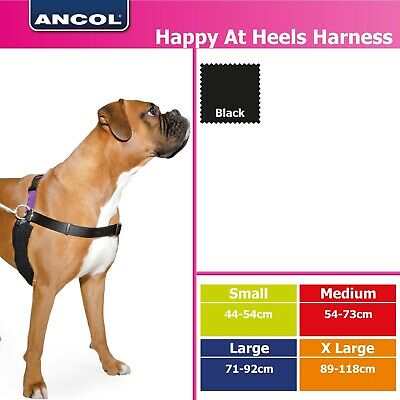 Happy at Heel Harness (include lead & DVD) - Ancol