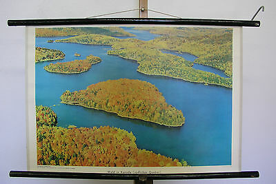 Pretty Mural Forest IN Canada Southern Quebec 75x51 Decor Vintage Map~1960