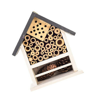 Parrot Essentials Wooden Bee, Ladybirds and Insects Bug House and Nesting box
