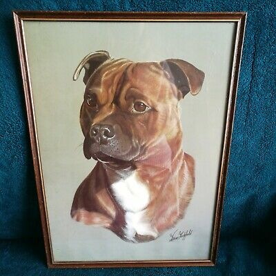 Staffordshire Bull Terrier Framed PRINT by Brian Hupfield RED DOG Staffie 16x13""