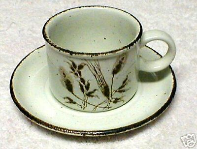 MIDWINTER WILD OATS  CUP AND SAUCER