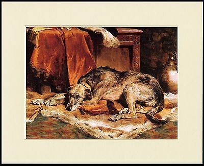 Irish Wolfhound Lovely Little Dog Print Resting Dog