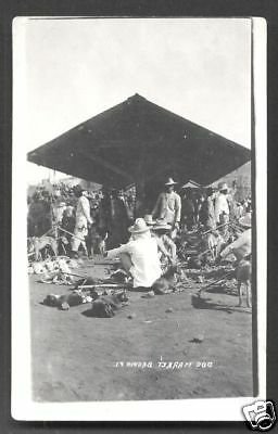 Baguio photo postcard Dog Market Luzon Philippines 1915