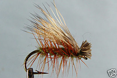 10 x dry fly subimago blue h14//16//18 you dry fly fishing trout mosca