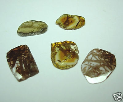 8.00 Carats 5 RARE Treasure of Polished Natural ROUGH DIAMONDS FancyCOLOR Slices