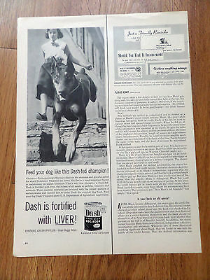 1954 Dash Dog Food Ad Champion Doberman Pinscher